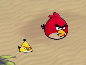 Angry Bird Gravity