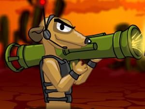 Meerkat Mission