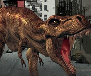 N Y Rex